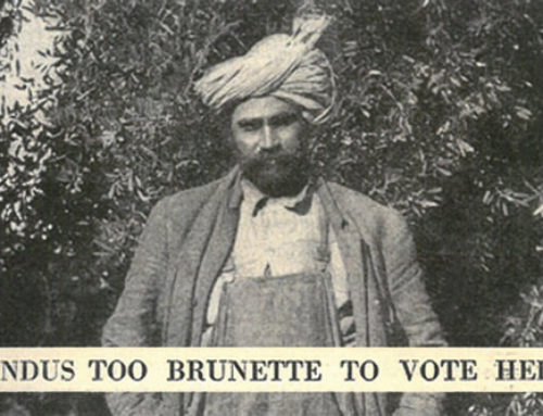 Hindus Too Brunette To Vote Here
